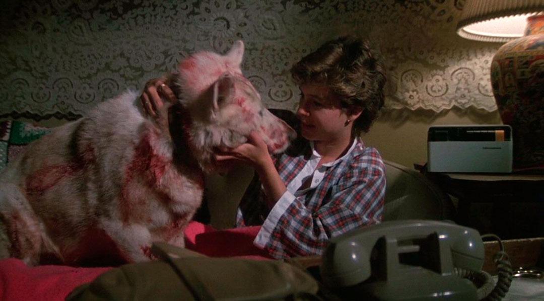 Kristy McNichol dans Dressé pour tuer (White Dog)