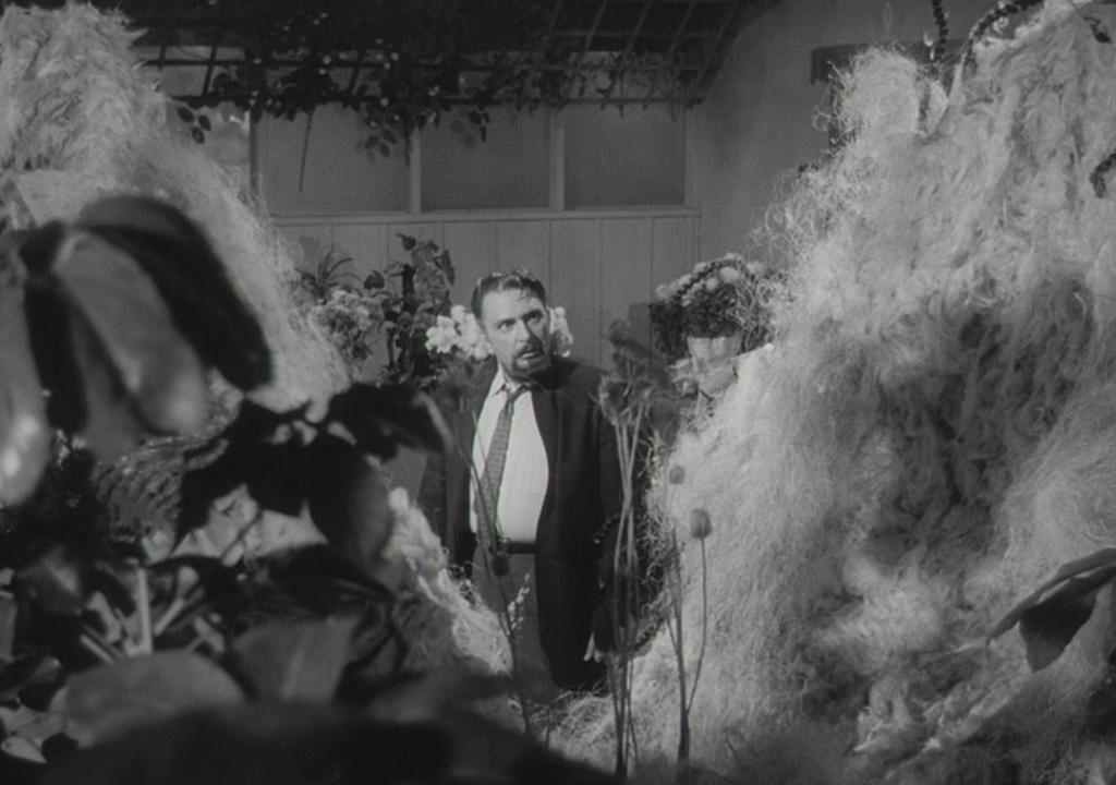 Mel Welles dans La Petite boutique des horreurs