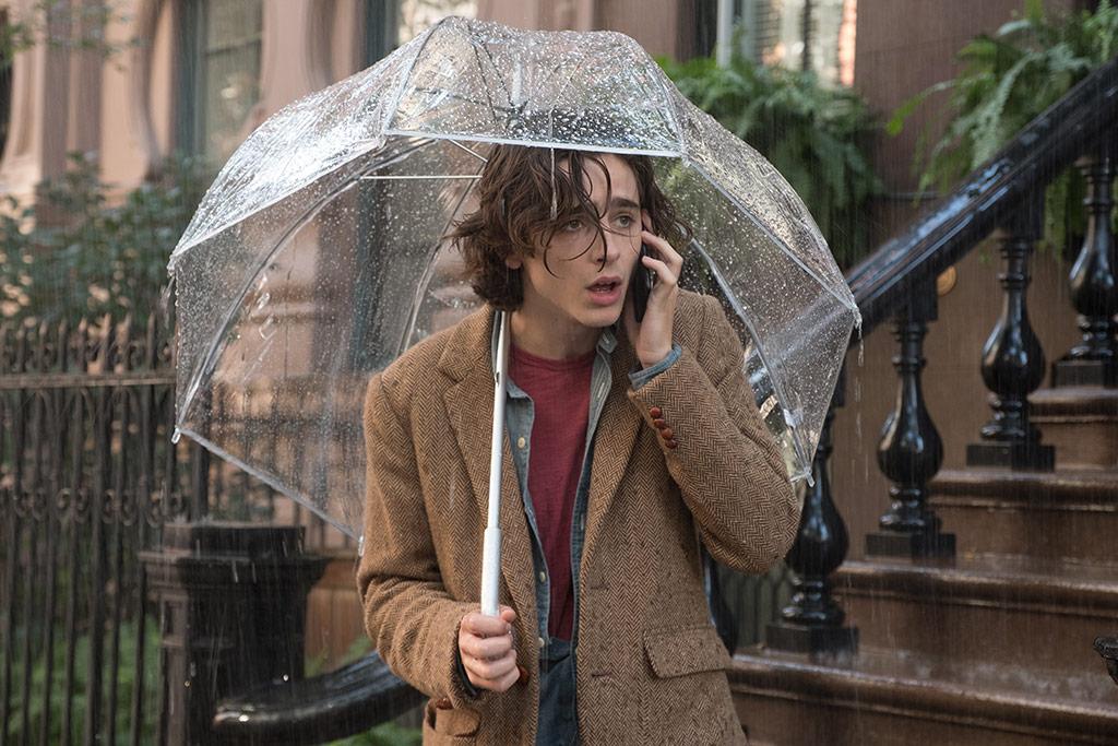 Timothée Chalamet dans Un Jour de pluie à New York